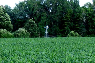 Irrigate Crops with Clean Water and a Clear Conscience