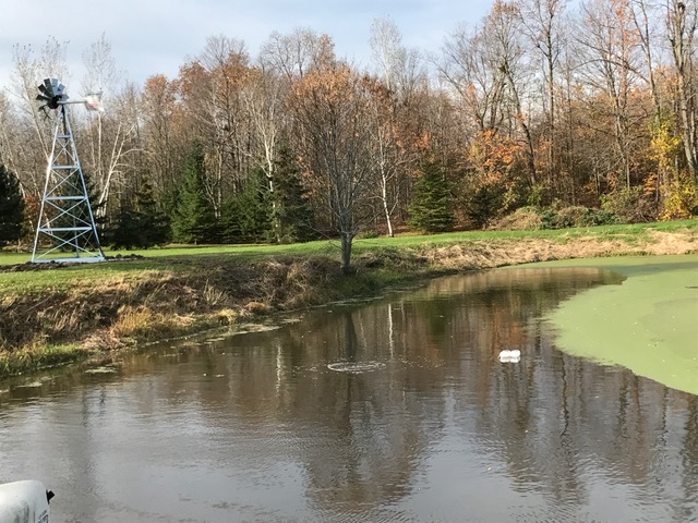 Pond Owners | Nature's Pond Care