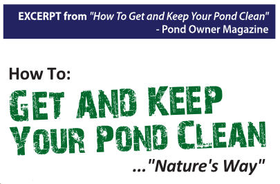 How to get and keep your pond clean by Steve Fender